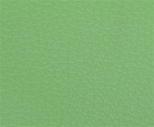 22-GREEN(PU LEATHER COLOR)